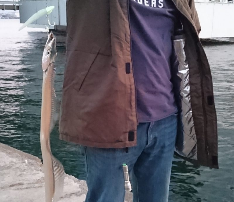 防寒 ワークマン 釣り