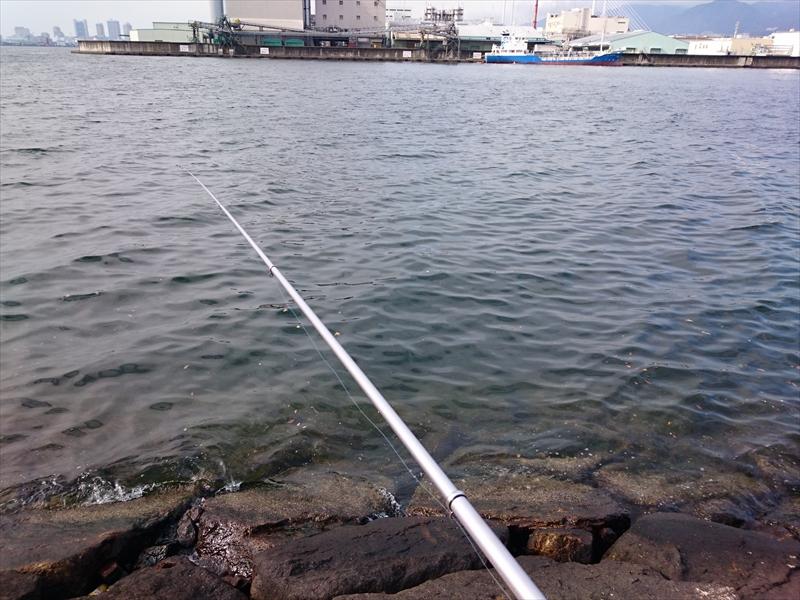 寒さに耐えながらフカセ釣り